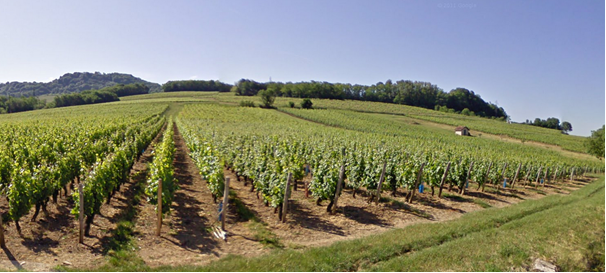 Jura - Vignoble google.map